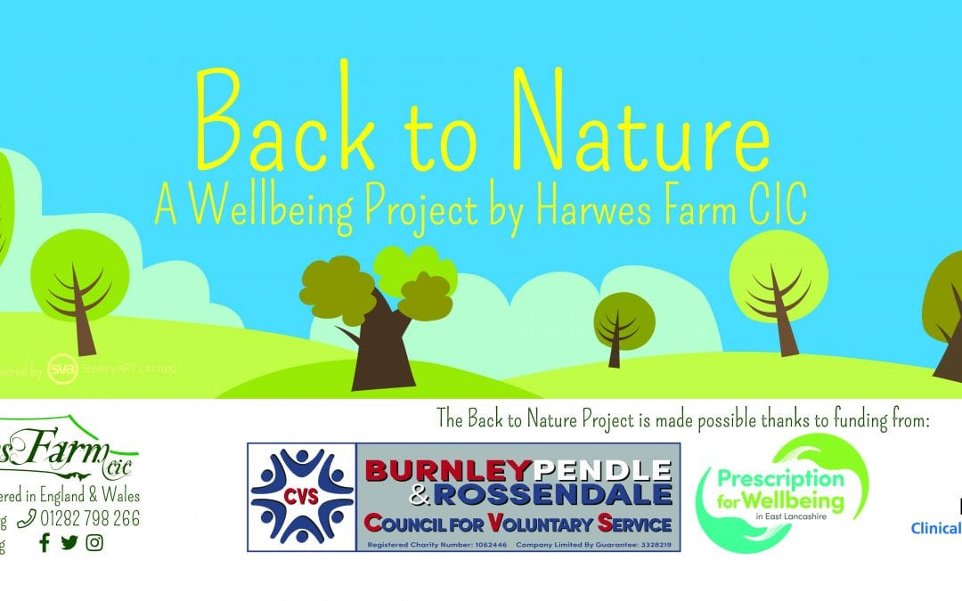 Back to Nature – Harwes Farm CIC